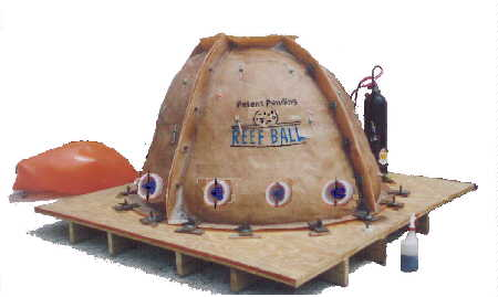 Photo of Set Up Reef Ball Mold