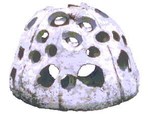 Picture Of Reef Ball